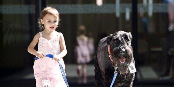 Child & Dog Day
